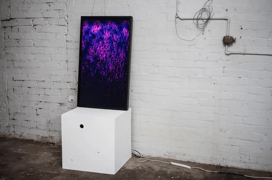 generative video monitor showcasing digital Indigenous Art